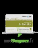 Granions De Bismuth 2 Mg/2 Ml S Buv 10amp/2ml à RUMILLY