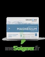 Granions De Magnesium 3,82 Mg/2 Ml S Buv 30amp/2ml à RUMILLY
