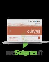 Granions De Cuivre 0,3 Mg/2 Ml S Buv 30amp/2ml à RUMILLY