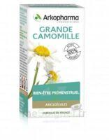 Arkogélules Grande Camomille (Partenelle) Gélules Fl/45 à RUMILLY