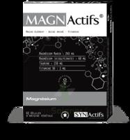Synactifs Magnactifs Gélules B/60 à RUMILLY