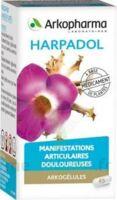 ARKOGELULES HARPAGOPHYTON Gélules Fl/150 à RUMILLY