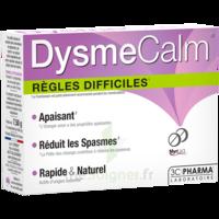Dysmecalm Comprimés B/15 à RUMILLY