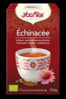 Yogi Tea Echinacee à RUMILLY