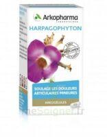 Arkogelules Harpagophyton Gélules Fl/45 à RUMILLY