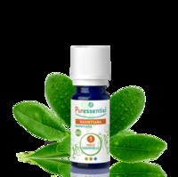 Puressentiel Huiles essentielles - HEBBD Ravintsara BIO* - 5 ml à RUMILLY