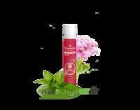 Puressentiel Anti-pique Roller Apaisant Anti-Pique - 5 ml à RUMILLY