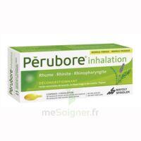 Perubore Caps Inhalation Par Vapeur Inhalation Plq/15 à RUMILLY