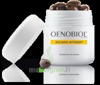 Oenobiol Solaire Intensif Caps Pots/30 à RUMILLY