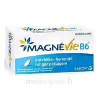 Magnevie B6 100 Mg/10 Mg Comprimés Pelliculés Plaq/60 à RUMILLY
