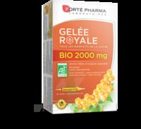 Forte Pharma Gelée Royale Bio 2000 Mg Solution Buvable 20 Ampoules/15ml à RUMILLY