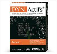 Synactifs Dynactifs Gélules B/30 à RUMILLY
