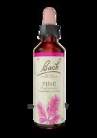Fleurs De Bach® Original Pine - 20 Ml à RUMILLY