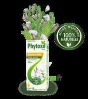 Phytoxil Toux Sans Sucre Sirop Adulte Enfant +2 Ans Fl/120ml à RUMILLY