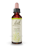 Fleurs De Bach® Original Olive - 20 Ml à RUMILLY
