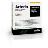 Aminoscience Santé Arteria Gélules 2b/56 à RUMILLY