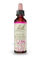 Fleurs De Bach® Original Star Of Bethlehem - 20 Ml à RUMILLY