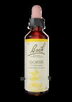 Fleurs de Bach® Original Gorse - 20 ml