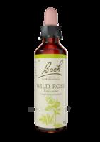 Fleurs De Bach® Original Wild Rose - 20 Ml à RUMILLY