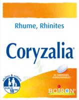 Boiron Coryzalia Comprimés Orodispersibles à RUMILLY